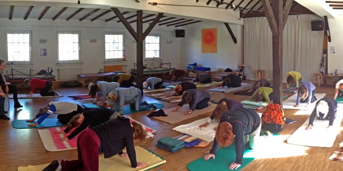 Feldenkrais Advanced Training